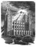 cool Salt Lake City Utah LDS Temple -- Artist Craig Stapley / http://www.mormonlaughs.com/salt-lake-city-utah-lds-temple-artist-craig-stapley/