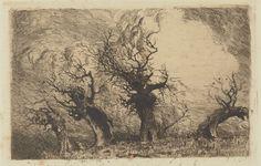 [Les mutilés - deuxième version, ou Le cénacle des saules] : [estampe] / [Eugène Viala] -- 1880-1913 -- images