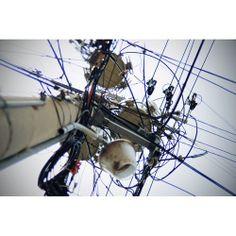 전봇대, 2012-09 성곡동 #photodang #pole #line #nikon #d90 #squaready