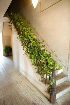 Staircase with greenery.  Idea:  Design a staircase with an integral flowerbox, e.g. within railing or behind risers, etc.  Greenery should avoid rail top and treads for user-friendly, stair climbing.