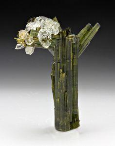 "Elbaite ""tree"" with quartz ""leaves""! :)"