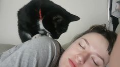 Every morning my wife and I get booped awake - Tiere / pet / animal - Gatos Cute Funny Animals, Cute Baby Animals, Animals And Pets, Cute Cats, Funny Cats, Love Pet, I Love Cats, Crazy Cats, Cute Animal Videos