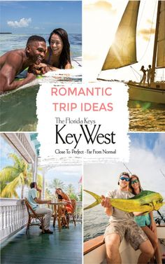 Key West, Florida : The Perfect Destination For A Weekend Getaway |  Honeymoon Spot in the USA The Perfect Getaway, Romantic Getaway, Romantic Travel, Romantic Destinations, Amazing Destinations, Dolphin Encounters, Honeymoon Spots, Key West Florida, Fish Swimming