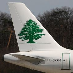 Middle East Airlines (MEA) Airbus A321-231 F-ORMH (14421) by Thomas Becker, via Flickr