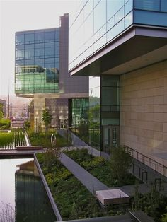 The Bill and Melinda Gates Foundation Campus hosts the second-largest LEED-NC Platinum building in the world, designed by Seattle-based firm NBBJ, which helps restore 40% of the campus back to being a wild bird habitat.