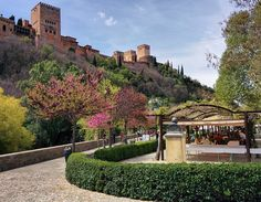 A gorgeous day to be out in Granada today. Perfect temperature, nice breeze and just the right amount of clouds to avoid combustion under the southern Spanish sun. And Spring is also adding some beautiful colors while the Alhambra is lazing under the sun.