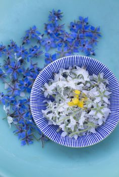 Edible Flowers from my new Book, 'Sommer' available in my farm shop, Webshop, and booksellers  www.fuglebjerggaard.dk