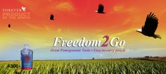 Freedom2Go!