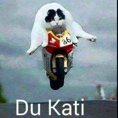 Hahaha Ducati!