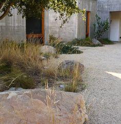 Replace your lawn! mediterranean landscape by Lane Goodkind Landscape Architect House Landscape, Landscape Design, Garden Design, Dry Garden, Gravel Garden, Boulder Garden, Gravel Landscaping, Natural Landscaping, California Garden