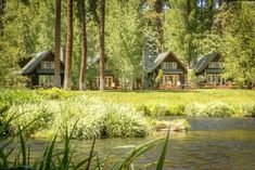 For a beautiful staycation, book one of these quaint cottages at Metolius River Resort in Camp Sherman, Oregon. They're right on the river! Vacation Cabin Rentals, Family Vacation Destinations, Best Vacations, Amazing Destinations, Vacation Spots, Vacation Ideas, Oregon Travel, Florida Travel, Sequoia National Park