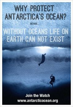 via Antarctic Ocean Alliance