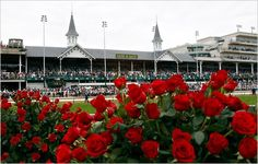 Run for the Roses, Ky. Derby!