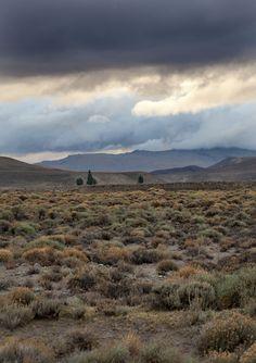 Lost in Patagonie |MilK decoration