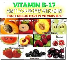 Vit B-17. Unfortunately this is banned in Australia but you can still get it if you look hard.