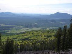 Kachina-Peaks-Wilderness-Coconino-National-Forest-AZ-013