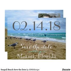 Seagull Beach Save the Date thin Magnet Magnetic Card Beach Invitations, Wedding Invitation Templates, Invitation Design, Wedding Invitations, Save The Date Postcards, Save The Date Cards, Miami Florida, Destination Wedding, Dating