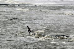 The Monsoon is the primary bearer of fresh water to bodies of water in the area. The peninsular/Deccan rivers of India are mostly rain-fed and non-perennial in nature depending primarily on the Monsoon for water supply. | Photo Credits: http://clikk.in/478478