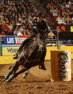 Barrel Racing Horses Horse Pole Bending Western Riding Rodeo