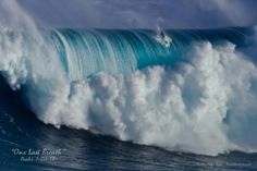 now that's a wave.....look at that wave! Just the sound alone would frighten me lol