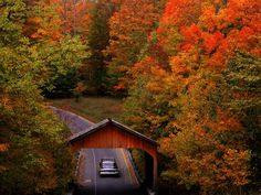 Pack up and get ready to hit the road for some fall foliage exploration.