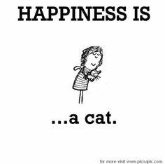 ... A cat