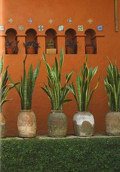 Inspiration from Mexican Interior Design, Museo Robert Brady by svanes Mexican Interior Design, Mexican Designs, Mexican Hacienda, Hacienda Style, Hacienda Decor, Mexican Garden, Mexican Patio, Mexican Home Decor, Mexican Style Bedrooms