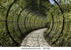 Horizontal, landscape format of concentric circles decoration walkway in an ornamental garden