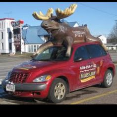 Moose jaw Pizza and Brewery Wisconsin Dells