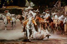 """""""COLAS EN EL LIENZO"""", 80X120 CMS., 2012"""