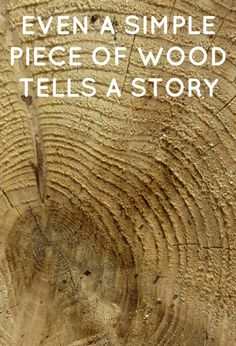 Even a simple piece of wood can tell a story. Best Quotes, Woods, Photo Editing, Simple, Nature, Pictures, Photos, Woodland Forest, Photo Manipulation