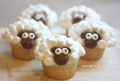 10 Sheep Template For Cupcakes Photo. Awesome Sheep Template for Cupcakes image. Sheep Crafts for Kids Cupcakes Sheep Cupcakes Easter Lamb Cupcake Cake Easter Food Ideas for Kids Easter Sheep Cupcakes Lamb Cupcakes, Sheep Cupcakes, Cute Cupcakes, Cupcakes Kids, Cupcake Recipes, Cupcake Cakes, Cute Kids Snacks, Kid Snacks, Sunday School Snacks