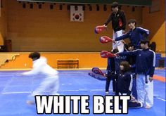 funny martial arts comedy and gifs to humor our senses