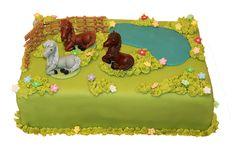 Detské torty Torty pre deti pripraví naša cukráreň k narodeninám, sviatku, nakrstiny ai iné príležitosti. Zobrazené modely môžete objednať vrovnakom prevedení