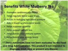 Benefits of white mulberry tea