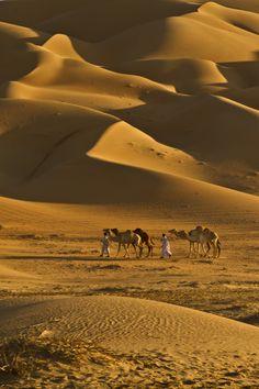 LIWA desert ... North of the Empty Quarter Camel caravan