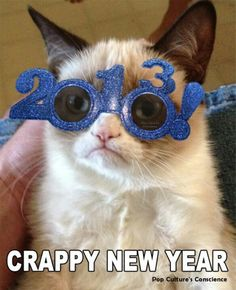 Crappy New Year from Grumpy Cat Grumpy Cat Quotes, Grumpy Cat Humor, Cat Memes, Grumpy Car, You Funny, Funny Cats, Hilarious, Funny Stuff, Baby Animals