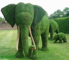 """Amazing garden full of topiary sculptures. Amazing garden full of topiary sculptures. - Art, Creative - Check out: Amazing """"Fairy Tale"""" Garden on Barnorama Amazing Gardens, Beautiful Gardens, Beautiful Park, Nature Green, Nature Nature, Amazing Grass, Topiary Garden, Moss Art, Elephant Love"""