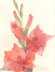 gladiolus for Gladys :) I like the 'type' of watercolor this is, as well as the color Watercolor Pictures, Watercolor Artwork, Watercolor Flowers, Watercolor Ideas, Watercolor Tattoo, Gladiolus Flower, Gladiolus Tattoo, Art Club, Pictures To Paint