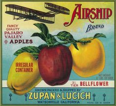 Airship Apple Crate Label – Watsonville, CA