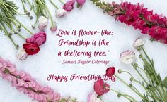 1 million+ Stunning Free Images to Use Anywhere Happy Friendship Day Picture, Friendship Day Poems, Friendship Day Pictures, Best Friendship, Finding New Friends, Friends Are Like, Celebrating Friendship, Happy Valentines Day Images, Free To Use Images