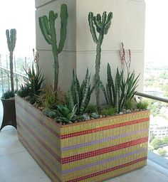 Mosaic Planters by Badec Bros Deco   Flickr - Photo Sharing!