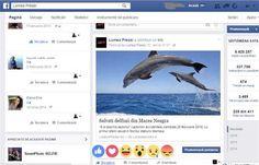 Incepand de astazi, si in Romania, cateva zeci de mii de utilizatori pot folosi butonul de Like si pentru a isi exprima parerea despre continut. Whale, Animals, Art, Art Background, Whales, Animales, Animaux, Kunst, Animal