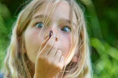 Dážďovky – neúnavní pomocníci. Čím viac ich v záhrade je, tým lepšie - Záhrada.sk Magazine, Magazines