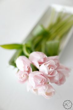Her favorite flower always works. Fresh Flowers, Silk Flowers, Beautiful Flowers, Pink Tulips, Pink Roses, Spring Projects, My Flower, Daffodils, Pink And Green