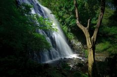 Efrata waterfall - Samosir