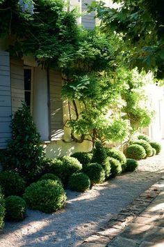.home and garden