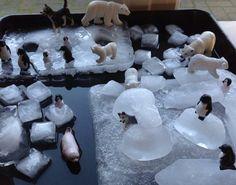 Ice Play with arctic animals.