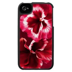 Pansy red fine art iPhone 4 Case by My Little Eden