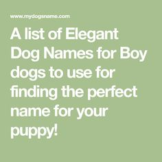 A list of Elegant Dog Names for Boy dogs to use for finding the perfect name for your puppy!